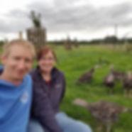 Free range bronze Christmas turkeys Swindon Wiltshire
