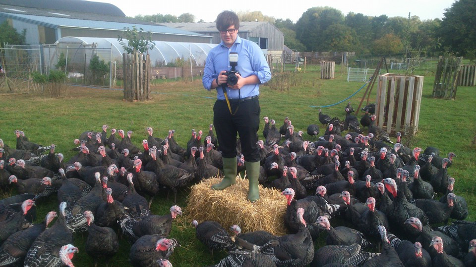 Turkeys with Phographer