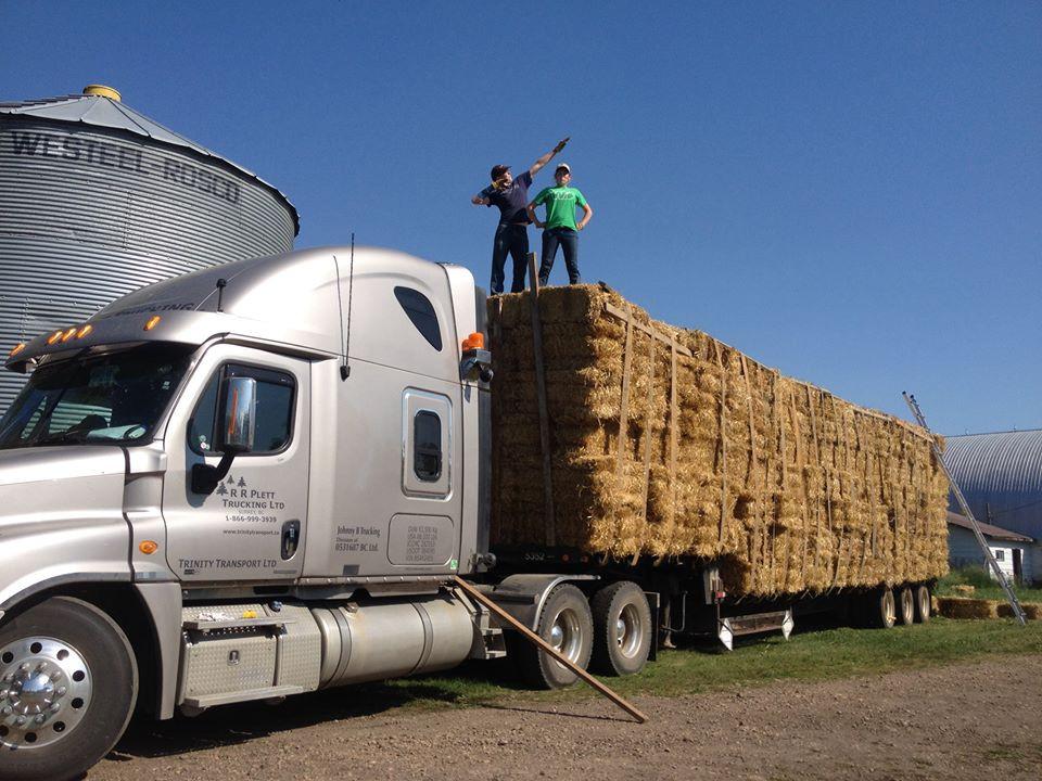 straw truck 4.jpg
