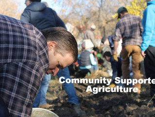 Reducing Food Waste & the Strength of Community