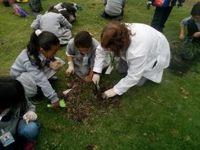 Día del Agua y Día de la tierra en el Colegio Van Leeuwenhoek