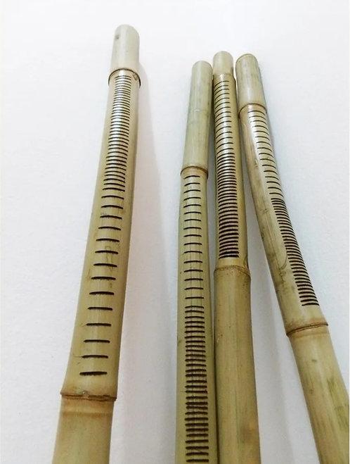Takuara Didgeridoo Largo