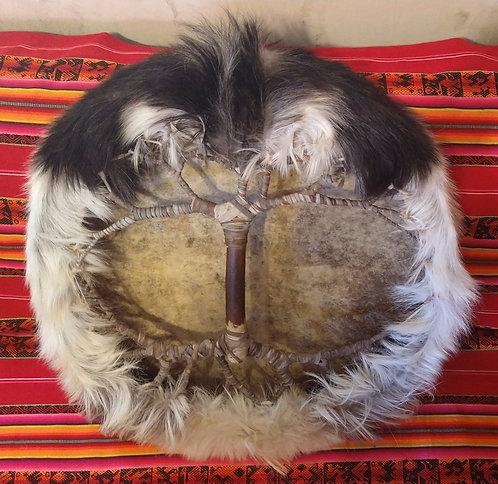 Lobo Blanco - Árbol de la vida - Tambor chamánico 57 cm