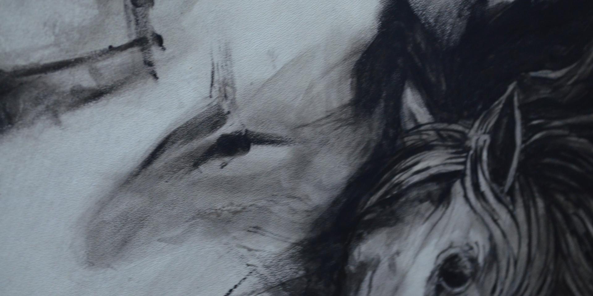 Potro Salvaje - cuerpos