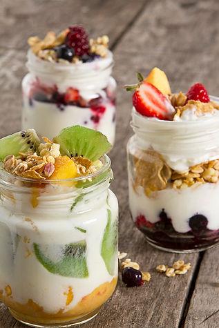 yogurtera01 copy.jpg