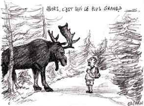 Oli et Caribou illustration