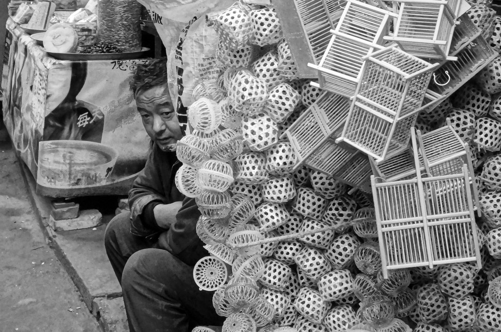 Man selling locusts, Xi'An 2017.