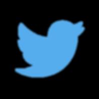 twitter bird.png