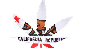 QR codes now required for cannabis retail and distribution operators in CA