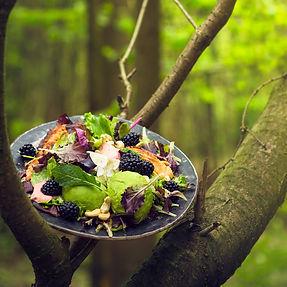 RESTORANAI BE SIENŲ: valgome miške, pievoje ir 1000 metrų aukštyje