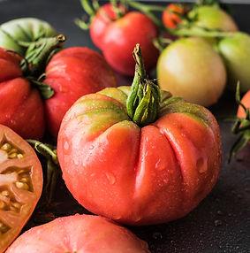 Kodėl svarbu išpjauti pomidoro kotelį?
