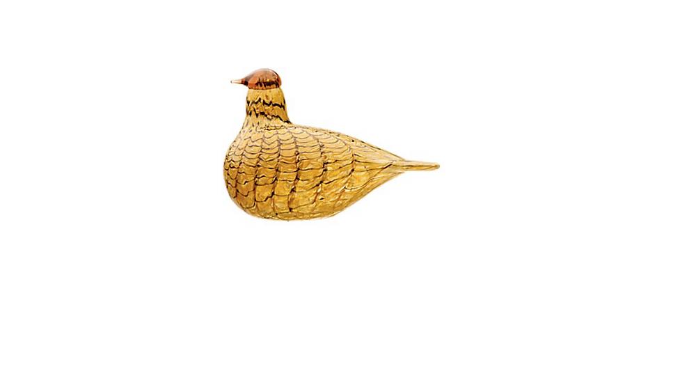 """""""Toikka"""" paukštis"""