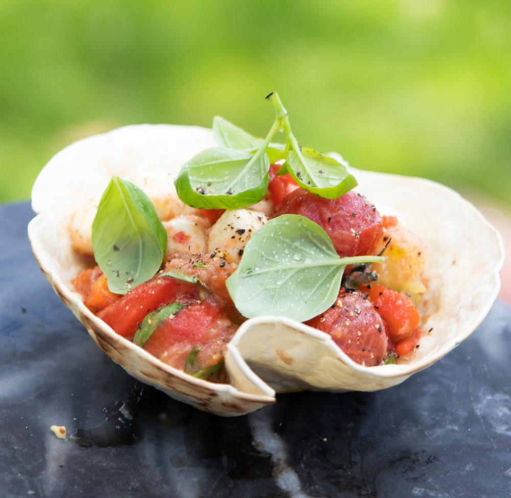 Pomidorų ir mocarelos salotos, salotos tortilijoje, grilio patiekalai, Alfo receptai