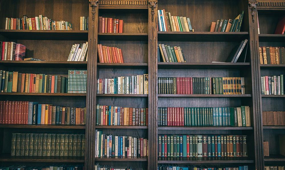 Kiekviename viešbučio kambaryje galima rasti knygų, bet didžiausia ir pagrindinė jų kolekcija yra sukaupta restorano salės lentynose. Ilgiau gyvenantys svečiai knygas skaito ir skolinasi. (Valerijos Stonytės nuotr.)