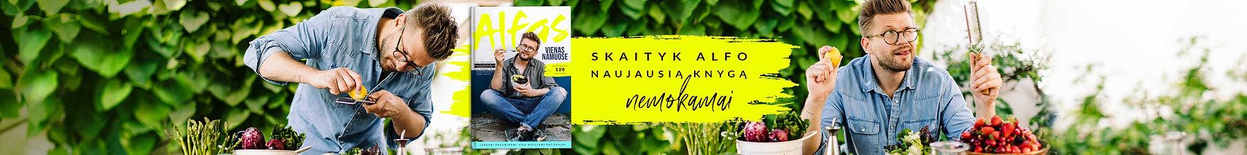 Alfo Ivanausko knyga vmg online