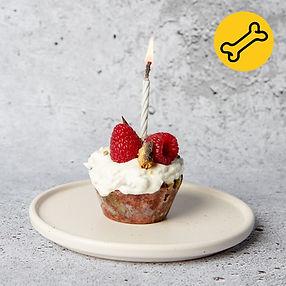 #Alfošuo: gimtadienio tortas šuniukui (Receptas)