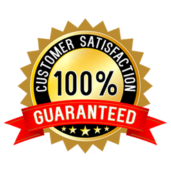 100% Satisfaction Guarantee Logo
