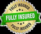 fullyinsured_500-e1537463546132.png