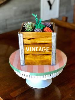 Sugar succulents cake