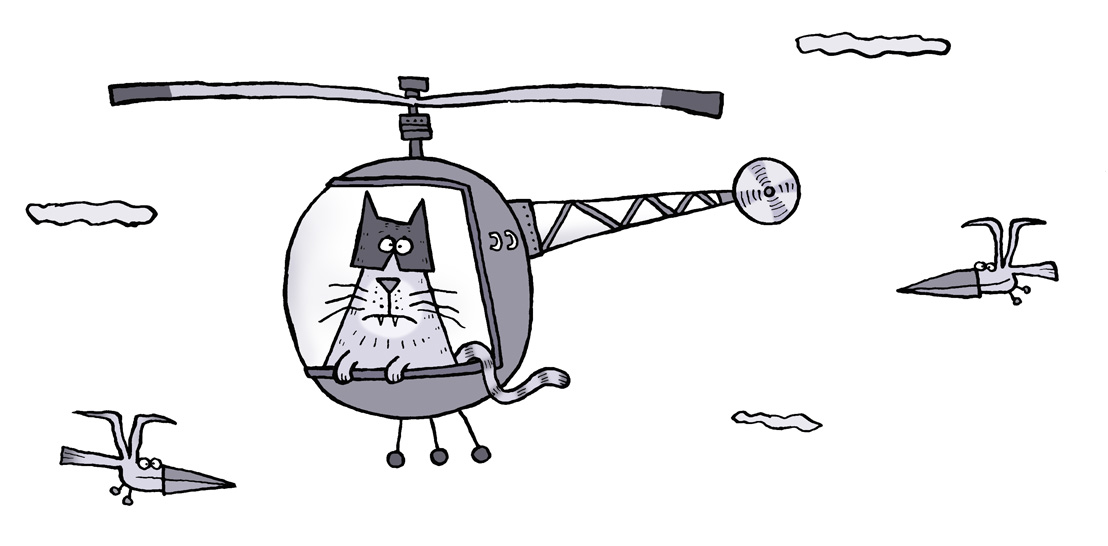 Cat in a Helicopter