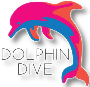 Dolphin Dive Transparent - Shadow.png