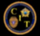 CIT pin 2.png