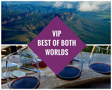 VIP best of both worlds.jpg