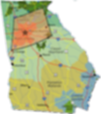 GA Land clearing service areas