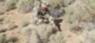 desert point.jpg