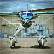 De Havilland Canada DHC-2 Turbo Beaver // Kapowsin (USA) // Juin 2019