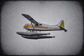 De Havilland Canada DHC-2 Beaver // Seattle (USA) // Janvier 2020