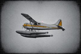 De Havilland Canada DHC-2 Beaver // Seattle (USA) // Janvier 2020