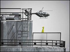 Eurocopter EC135 // Paris (France) // Mai 2020