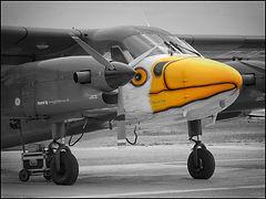 Dornier D28-G92 Skyservant // Séville (Espagne) // Septembre 2019