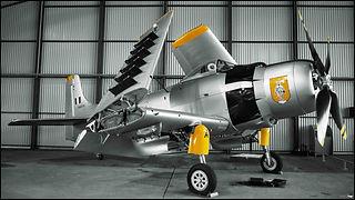 Douglas AD-4N Skyraider// Le Bourget (France) // Octobre 2020