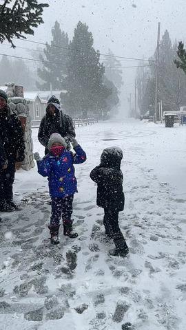 Snowfall at the ranch. February 11, 2021