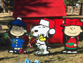 Holiday Decorations Are Going UP!