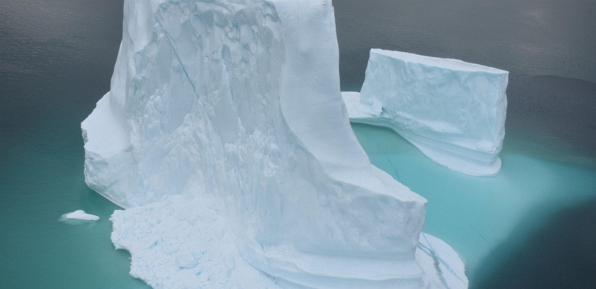 Icebergs from Greenland.