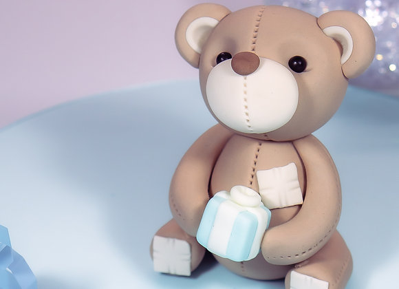 Teddy Holding a Present