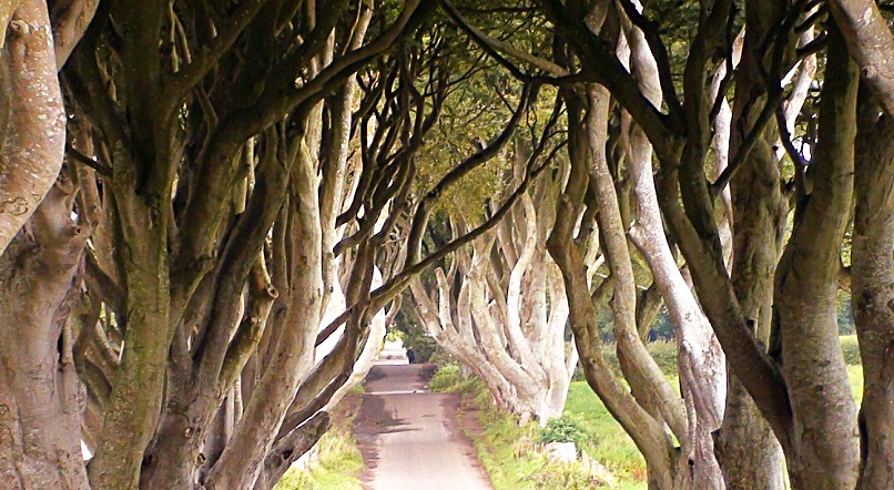 Game of Thrones Tour North