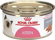 RC Kitten.jpg