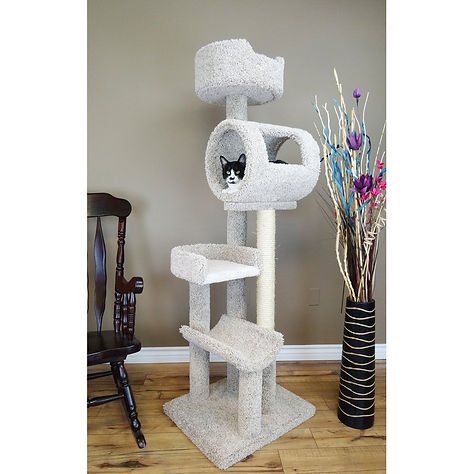 Cat scratching post.jpg