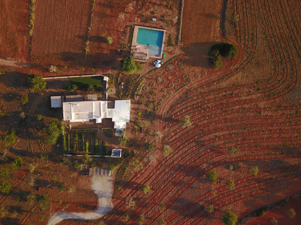 Ibiza villa Le Collectionist