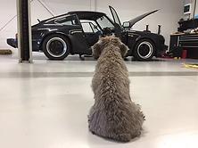 Werkplaatshond.png