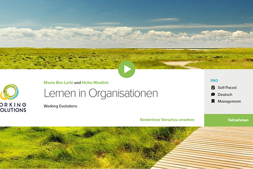 Lernen in Organisationen