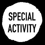 ボタン_SPECIAL_ACTIVITY.png