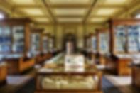 tweede fossielenzaal Teylers Museum