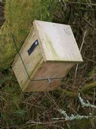 Dormouse box (by Pete Newbold)