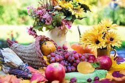 Happy Thanksgiving With Gratitude!