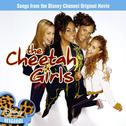 The Cheetah Girls - Cinderella